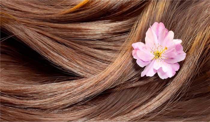 درمان ریزش مو در خانمها